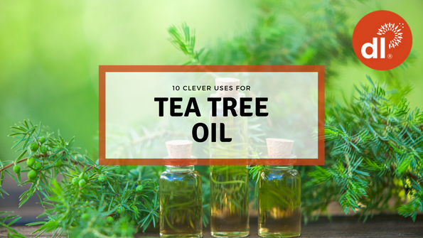 10 genius uses for tea tree oil